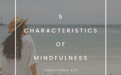 5 Characteristics of Mindfulness